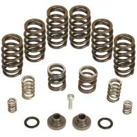 PART TYPE - Engine Parts - BD Diesel - BD Diesel | Governor Spring Kit | 1040185
